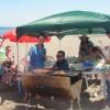 海水浴とバーベキュー 三浦海岸 完璧真夏?