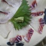 鮫が良く釣れる三浦海岸