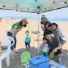 青空と笑顔と笑い声の三浦海岸ビーチBBQ